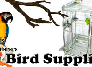 BIRD SUPPLIES
